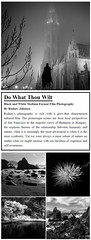Photo Exhibition: Do What Thou Wilt by Rodney A. Johnson