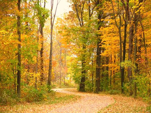 autumn ohio fall lakeerie biketrail ashtabulacounty genevastatepark