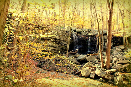autumn fall nature golden pennsylvania buckscounty highfalls ringingrockpark highrockscreek