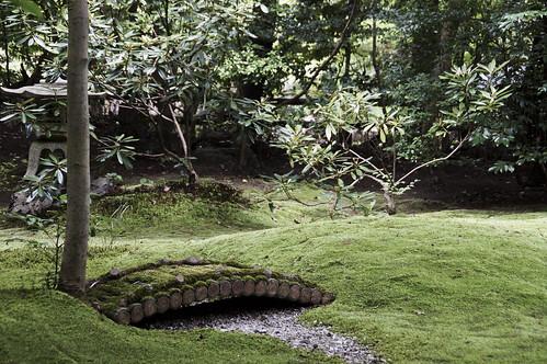 Garden | by jose.jhg