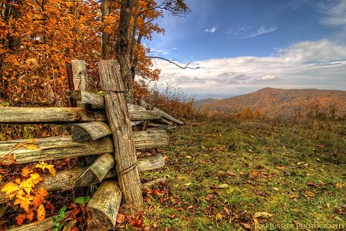 autumn usa mountain tree clouds fence landscape virginia landscapes nationalpark nikon fallcolor fallcolors shenandoah skylinedrive shenandoahnationalpark tomlussier