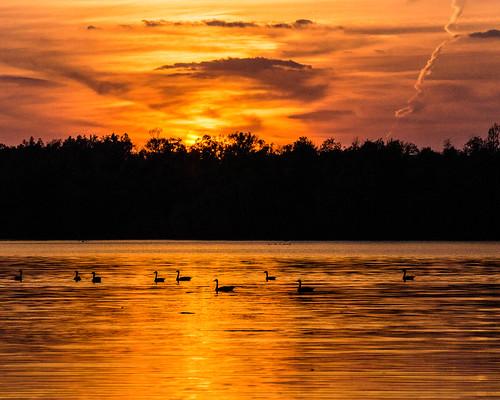 sunset day unitedstates cloudy arkansas fayetteville