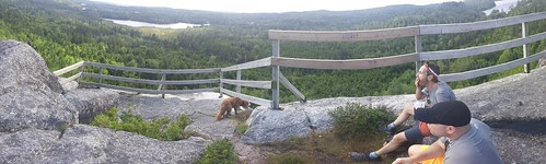hiking musquodoboit summer trailway halifax nova scotia hike trail trails nature dartmouth novascotia