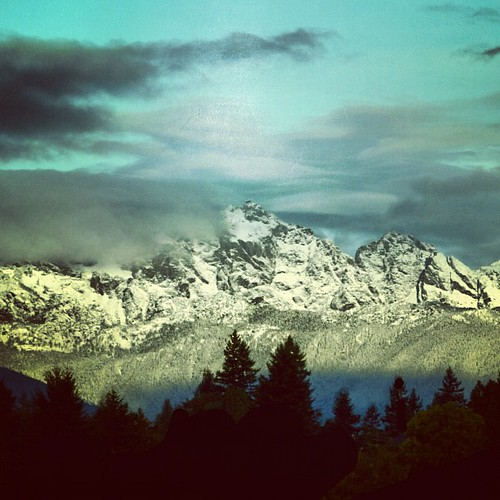 trees mountains square silhouettes squareformat hudson olympicmountains iphoneography instagramapp uploaded:by=instagram foursquare:venue=4e21d18eaeb70263953400e5