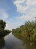 Dunajská delta, foto: Matěj Kubíček