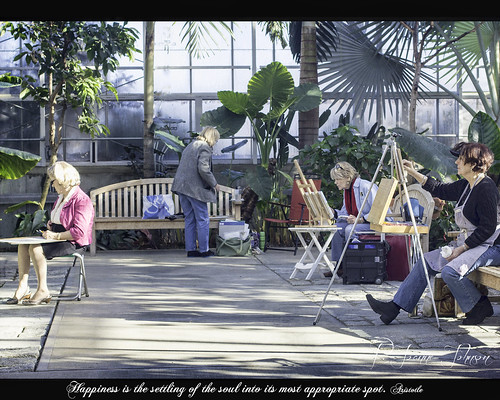 winter plants peace happiness artists botanicalgarden painters rogerwilliamspark sunsghine odc3 rjoannejohnson