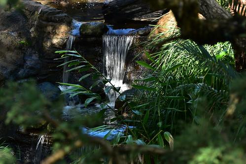 nikon d5500 nikkor nikkor70300mm water waterfall ferns dof trees rockformation rocks reflections depthoffield outdoor sunset nikonpassion topf25 500v20f 1500v60f 7dwf
