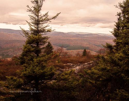 autumn mountains fall texture pine countryside westvirginia processing overlook appalachia 2012 spruceknob tuckercounty kimklassen onethousandgifts pumpkingrunge beyondlayers