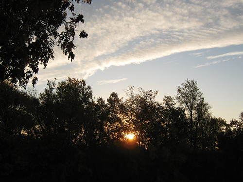 trees sky sun clouds sunrise landscape kansas fortriley