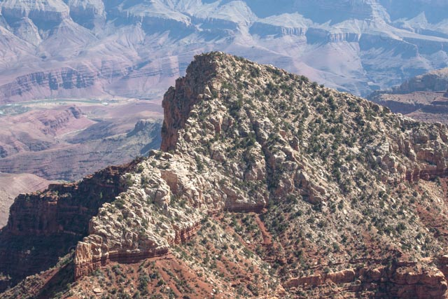 Varied landscape within the Grand Canyon