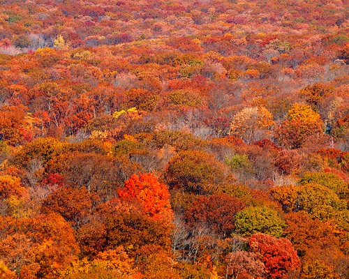 park mountain ny newyork fall landscape state foliage pip harriman nys 2012 stonypoint rocklandcounty harrimanstatepark palisadesinterstatepark pipc jackiejones jag9889 y2012