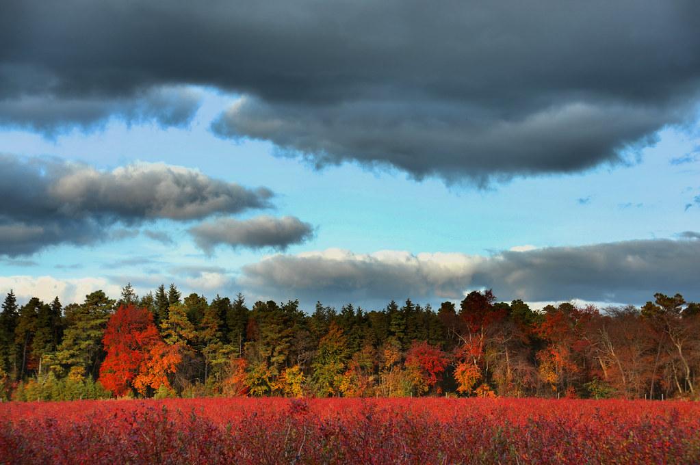 Cold October Sky