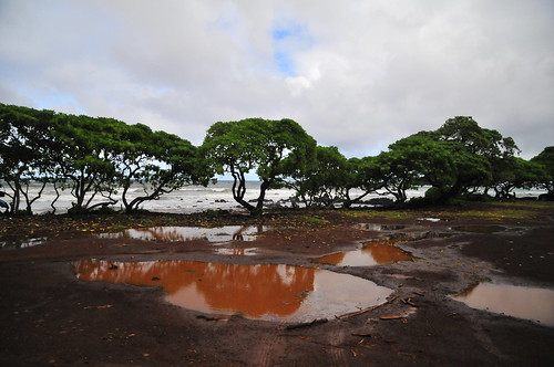 Hana red mud green trees | by vibrant_art