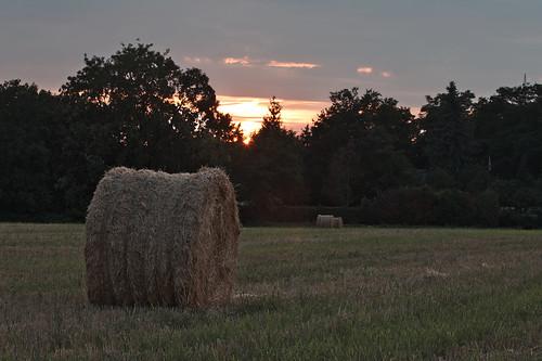 sunset sonnenuntergang coucherdusoleil schwetzingen