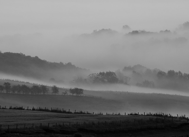 mist in the valley 2