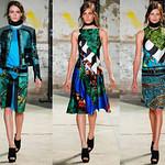 孔雀在许多英国名人时尚趋势也很受欢迎。布莱克·莱弗利,新的时尚参考,证明了她的衣服。这是突出了优雅的黑色礼服和透明的完成深浅不一的绿色孔雀羽毛。
