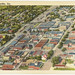 Aerial view, Griffin, Ga. by Boston Public Library