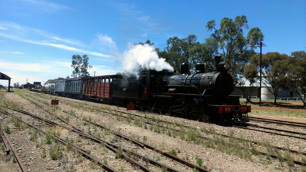 NM25 on a trial run, Pichi Richi Railway by sthompson308