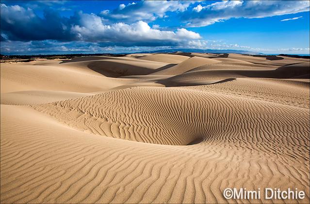 Sand Dune Vortex