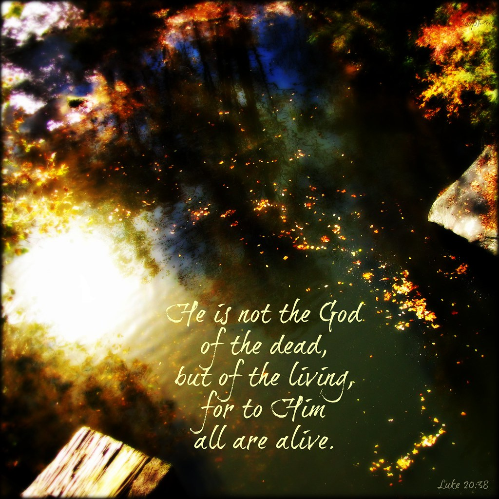 Luke 20:38 | Blogged here. | Sarah Cooper | Flickr