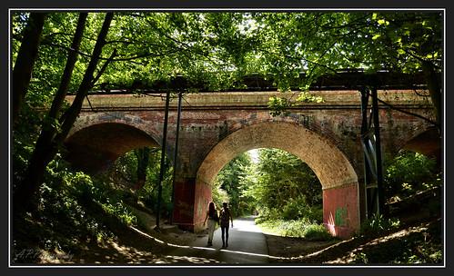 nikond7000 nikon18200lens therodwelltrail weymouthdorset views tunnels bridges trees