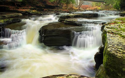 autumn trees creek waterfall rocks stream hiking pennsylvania falls cascades creativecommons ravine wyomingcounty endlessmountains clintontownship southbranchtunkhannockcreek countrysideconservancy littlerockyglen littlerockyglenpreserve