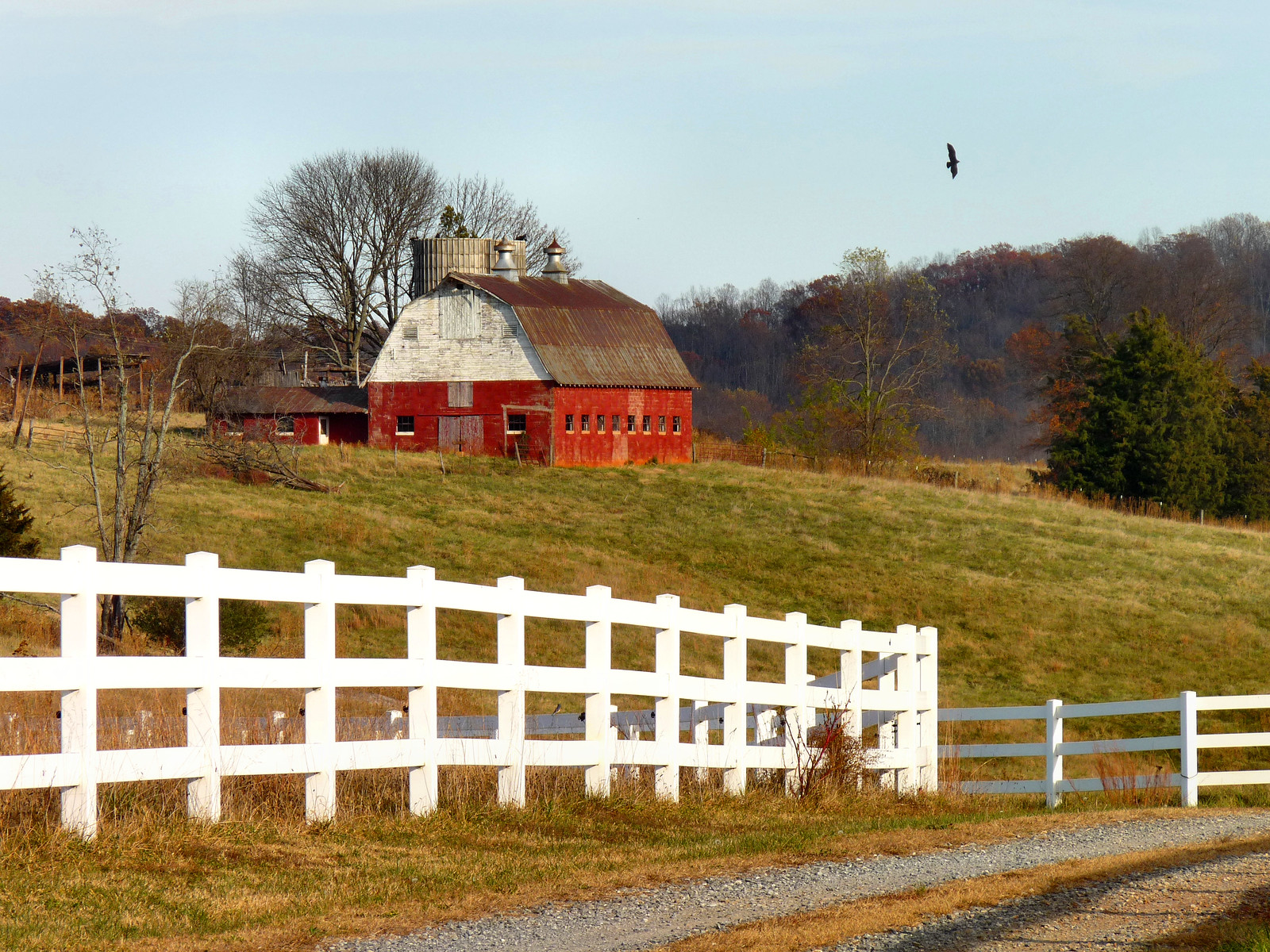 photo of barn in virginia