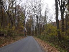金, 2012-10-26 13:26 - Mercer's Mill Covered Bridge の近く