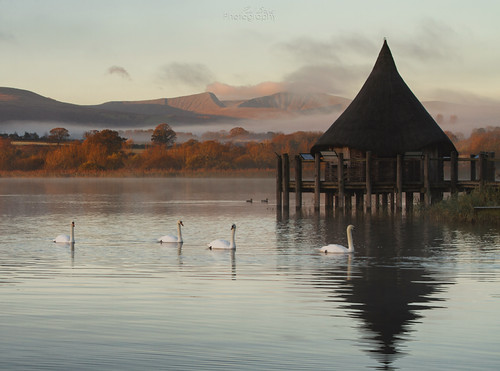 mist lake mountains water wales pen sunrise canon fan y south swans 7d l ripples 24105 llyn llangorse syfaddon