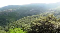 Вид на горы с терассы ресторана