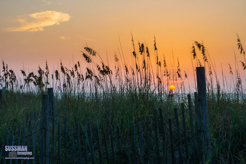 atlanticocean beach clouds fence grass horrycounty myrtlebeach nature ocean sky sonyslta77 southcarolina sunrise sussmanimaging thesussman water wood unitedstates