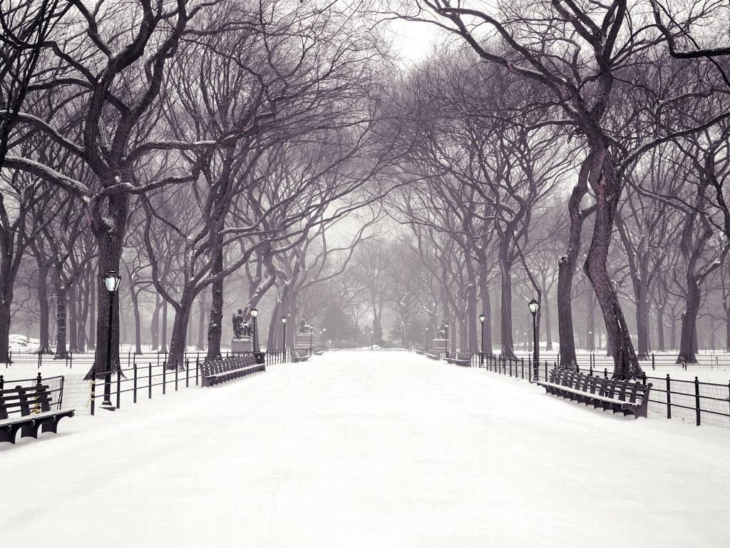 Cool New York Central Park Wallpaper Cabessha Flickr