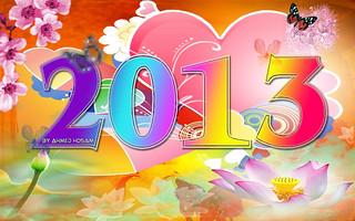 New Year 2013 Flower