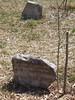 Butrint – S. Berlusconi zasadil strom, foto: Petr Nejedlý
