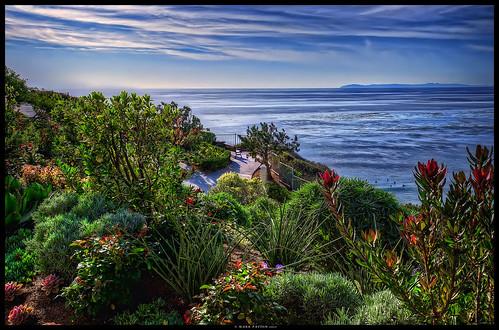 ocean california sea flower art water fence john bench island catalina nikon friend carlton view surfer seat ritz missed d7000 ©markpatton