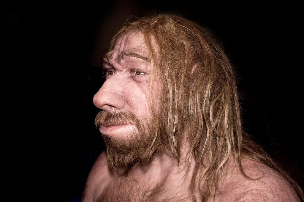 {$tags} Uomo di Neanderthal - autore ignoto //live.staticflickr.com// © dell'autore