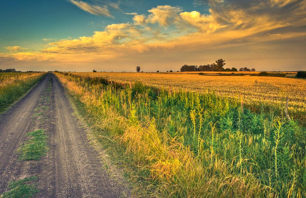 Camino vecinal