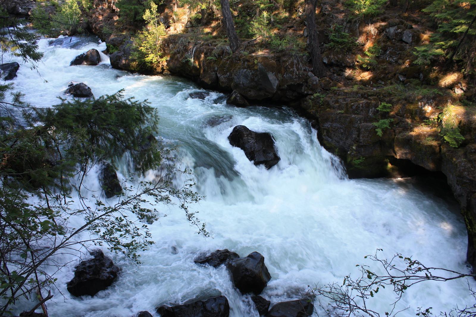 Rogue River Dam Blindsides Salmon