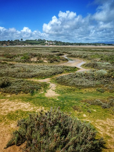 nature landscape alvor marsh coast algarve ria
