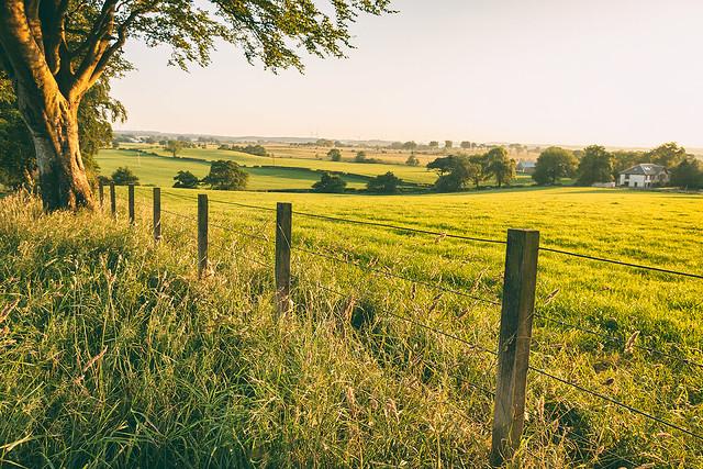 fields and fields