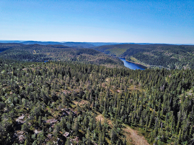 03-Store Nykjua sett fra Lårvika (drone)
