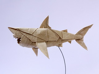 Great white shark | by Cường Origami