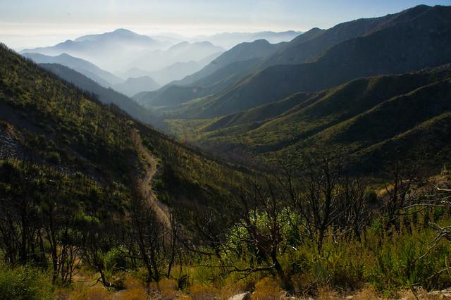 Foggy Valley II