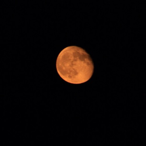 harvest moon from September. #nofilter | by sarahwulfeck