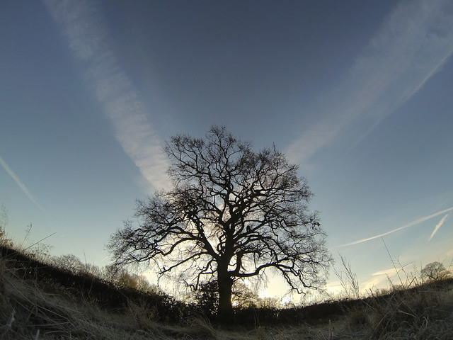 GoPro Hero 3 Still - Winters Morn, Learn composition at www.Lightism.co.uk
