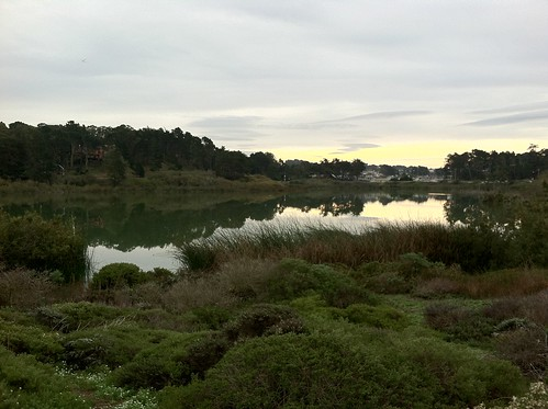 Lake Merced - Reflections