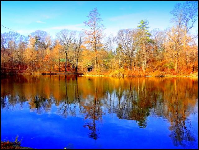Prospect Park. Lake