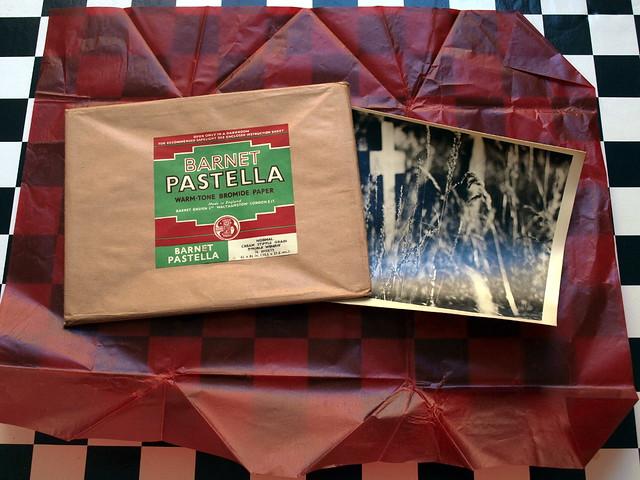 Barnet Pastella