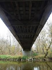 日, 2012-10-28 11:07 - Lancaster Country Park