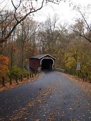 日, 2012-10-28 11:02 - Lancaster Country Park